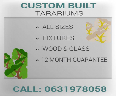 custom built terrariums