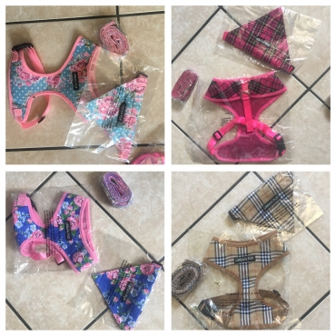 Doggy Harnesses/bandanas/leads