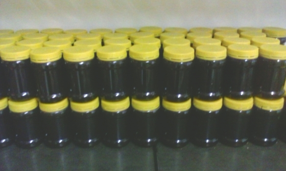 100% RAW ORGANIC HONEY