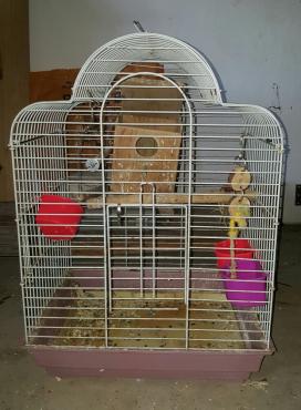 Bird cages x 3
