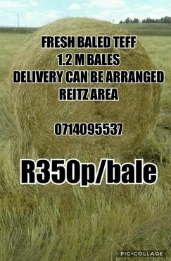 feed bales