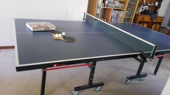 DunRun Ping Pong Table
