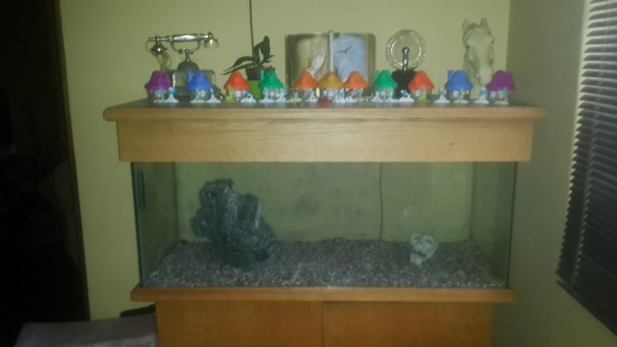 very large fishtank fore sale urgent sale
