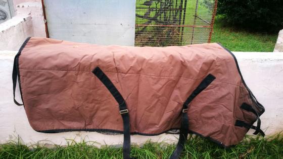 trident horse blankets