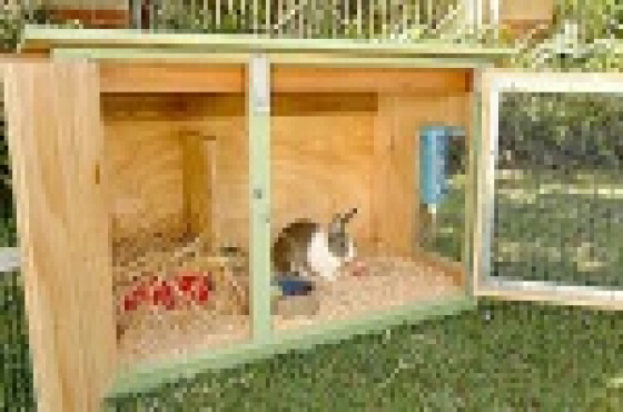 Rabbit hutches and pet homes.