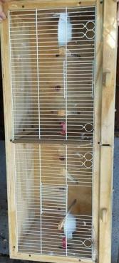 Bird cages x2 650+650