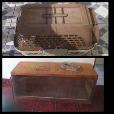 Pet carrier and reptile tank for sale