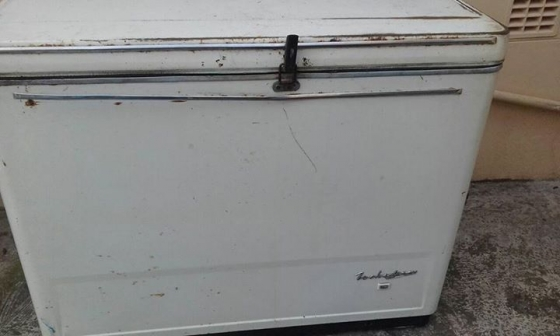 Fuchsware Large Chest Freezer