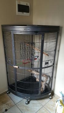 Corner parrot/pet cage