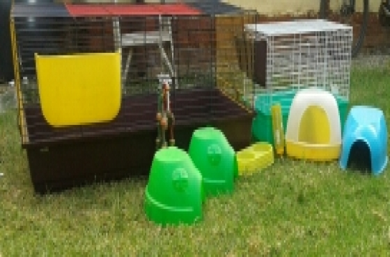guinea pig cages and accessories