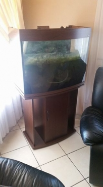 Display fish tanks in cabinets