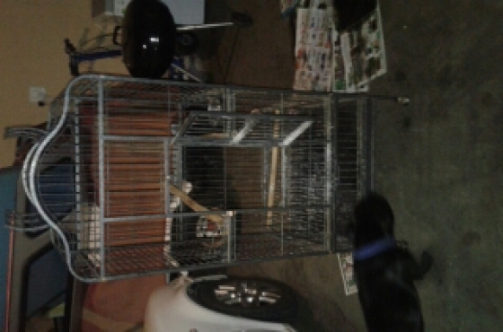 Big bird cage for sale.