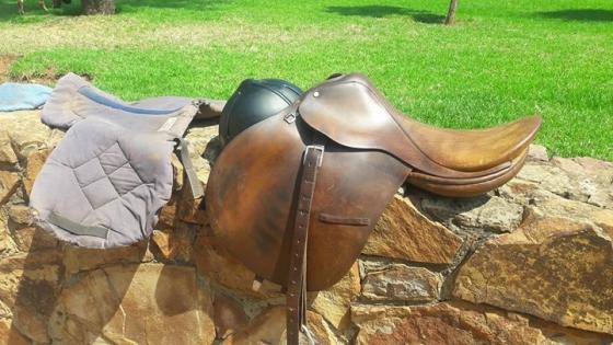 Laird Junior Jumper Saddle