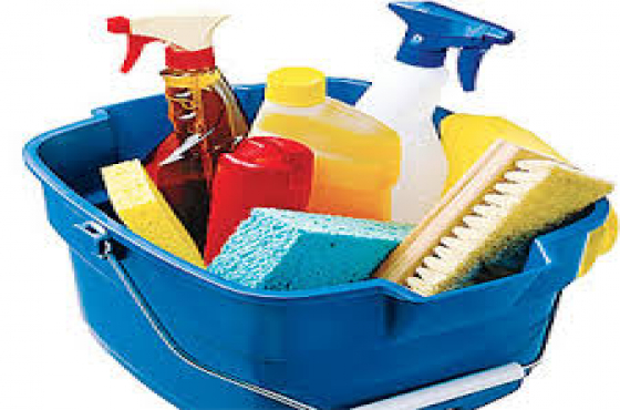 Houshold Chemicals and car wash/wax recipes to start your own business R380