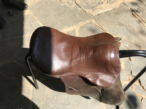 Old Stuben 15.5 saddle for sale