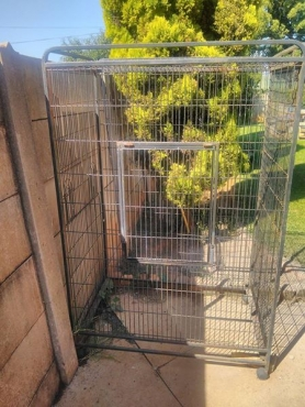 Parrot cage for sale.