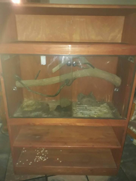 Snake cage for sale