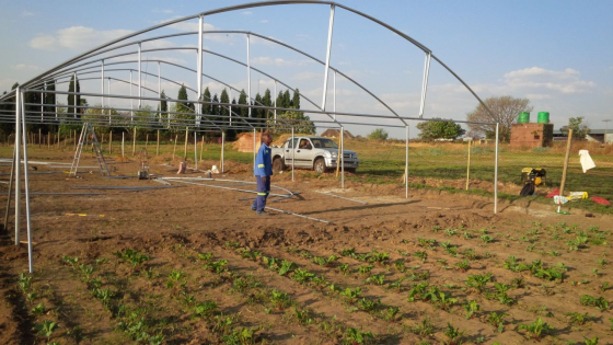 Hydroponic System Suppliers North West ,Greenhouse Design