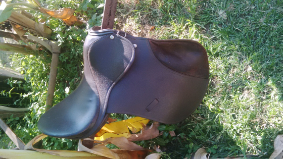 Horse saddles for sale