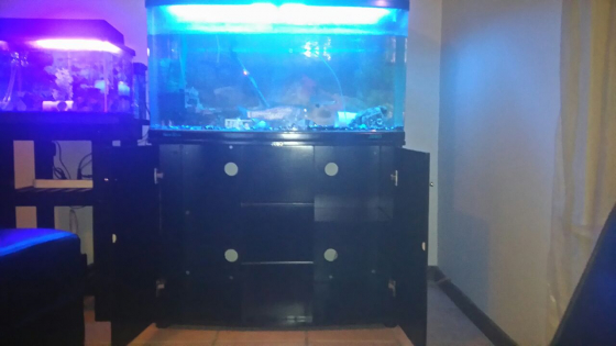 Fish Tank & Cabinet for Sale with Cabinet