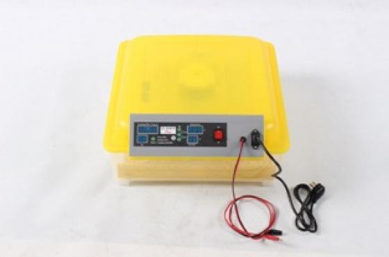 Automatic  Incubators 12 volt battery AND 220 V mains