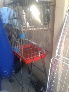 i have five bird cages for sale at a very low price