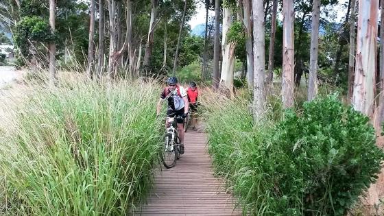 Beginners Mountain Bike Skills Courses