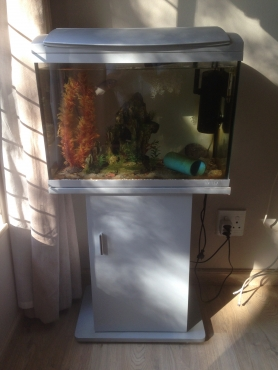 Hailea 60 litre Fish Tank and extras