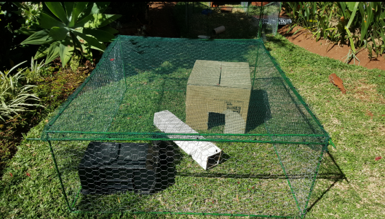 OUTDOOR CAGE