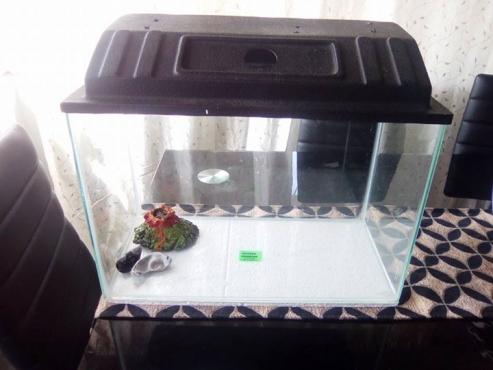 Fish tank 43 cm x 22 cm