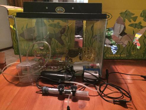 Daro Fish tanks