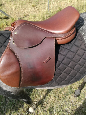 Beautiful Jumping Saddle