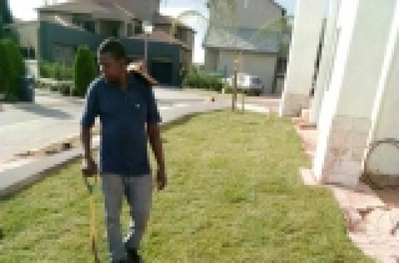 LM, Evergreen & Kikuyu Lawn& Manures