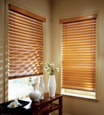Blinds and curtain