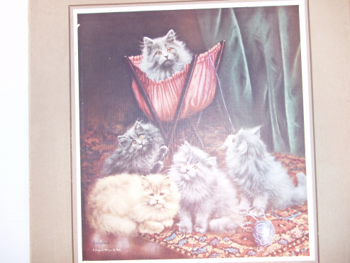 Very Old Print of Cats - King of the Castle  - Stanfords - Witbank