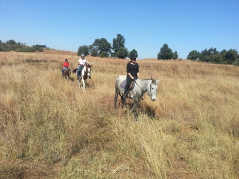 GUIDED HORSE OUTRIDES AT KLIPRIVIERSBERG NATURE RESERVE