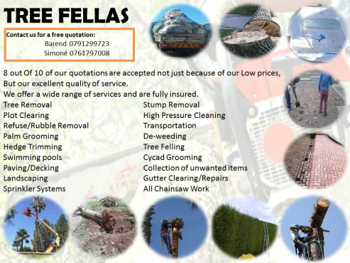 Tree Fellas Professional Services at affordable Prices