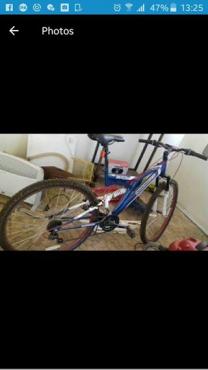 29 beast fiets te koop