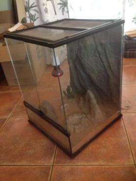 Exo Terra Reptile Tank