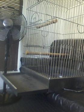 New Big Bird Gage,