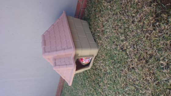 medium tuscan dog house