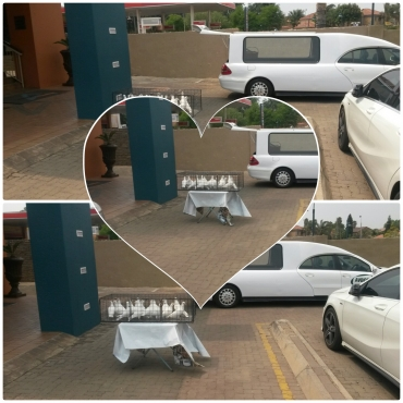 White doves for rent any place in jhb from 500 rand