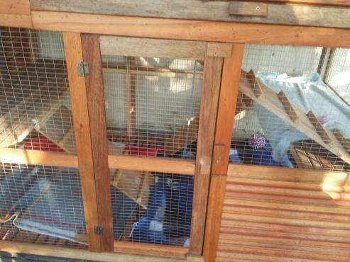 brand new three story cage