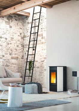 Pellet  Wood and gas Fireplaces