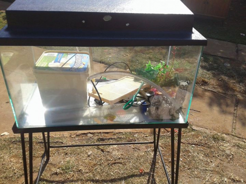 Fishtank with accessories and stand