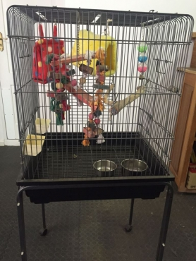 Parrot Cage - Small