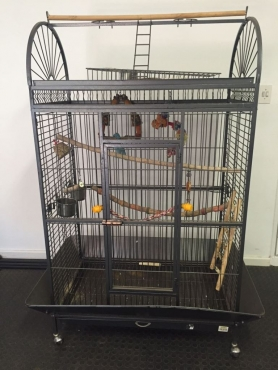 Parrot Cage - Big