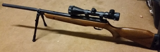 Gamo Hunter Extreme .177 Springer Airgun - Masterpiece.