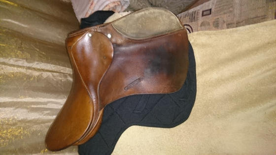 Stubben jumping saddle