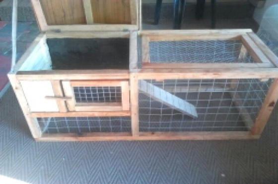 Rabbits cage special